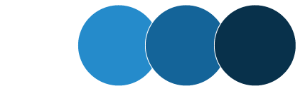 The Comfortable Seat Main Color Palette