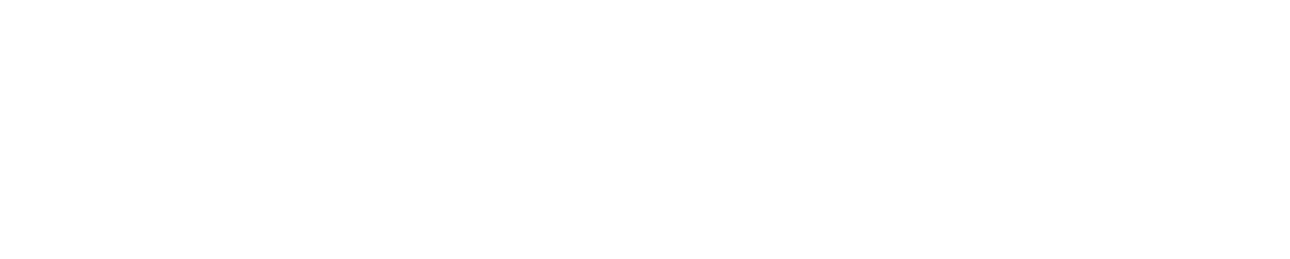 Full Engagement Experience logo 000